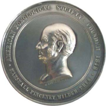 The Wilder Medal